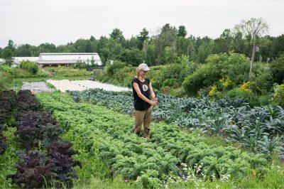 Regenerative Farm