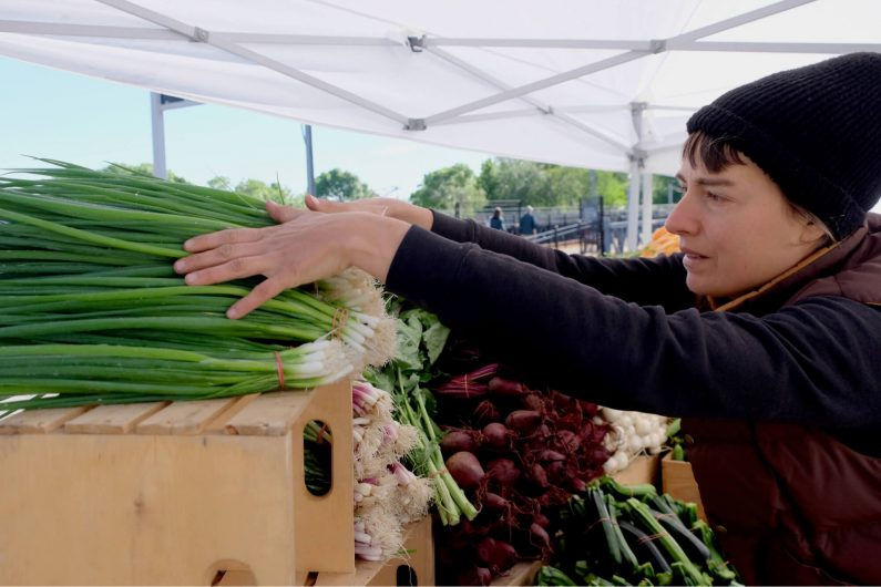 Being early at farmer's market with crops / Credit : Caroline Cloutier