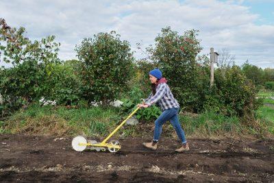 Jang seeder on a small farm